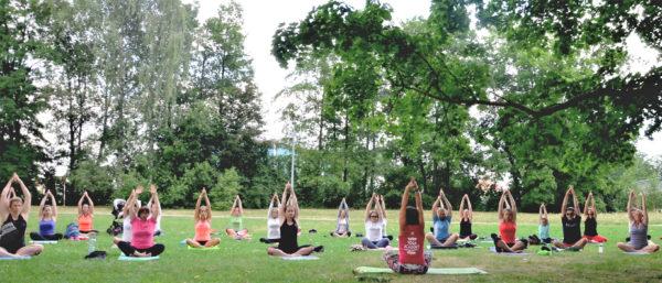 Lekce jógy zdarma v Českých Budějovicích - Cvičte jógu s námi